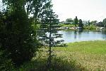 14472 Limerick Ln, Cement-City, Michigan 49233